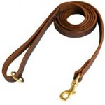 Stitched Leather English Pointer Leash for Training and Walking