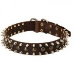 3 Rows Leather Spiked and Studded English Pointer Collar
