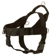 Nylon English Pointer Harness with Patches