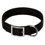 2 Ply Nylon English Pointer Collar
