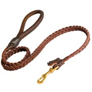 English Pointer Leather Braided Dog Leash