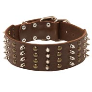 Extra Wide Leather Spiked and Studded English Pointer Collar