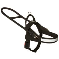 All Weather Nylon English Pointer Harness for Guide and Assistance