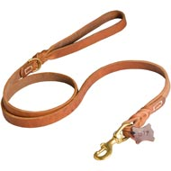 Walking and Training Leather English Pointer Leash with Comfy Handle