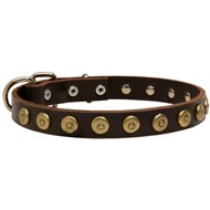 Leather English Pointer Collar with Brass Dotted Circles for Fashion Walking