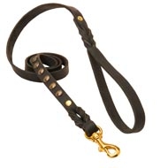 Studded Leather English Pointer Leash for Dog Walking and Training