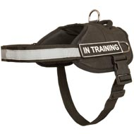 Nylon English Pointer Harness with Reflective Strap for Training, Walking, Police Service, SAR and More