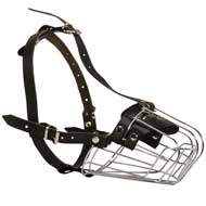 Wire Basket English Pointer Muzzle for Comfortable Walking and Training