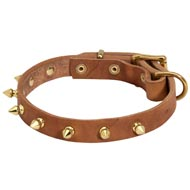 Walking Designer Leather English Pointer Collar with Brass Spikes