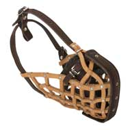 Basket-Like English Pointer Muzzle Leather