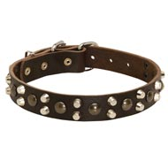Leather English Pointer Collar With Studs and Pyramids