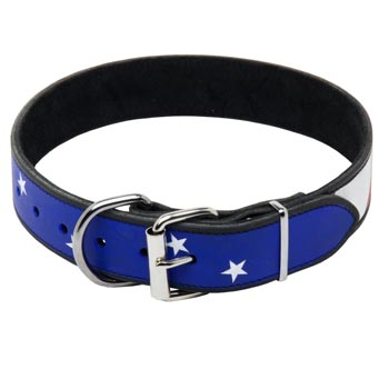 English Pointer Leather Collar With American  Flag Painting