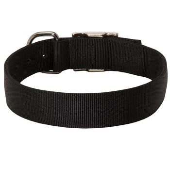 Nylon Collar for English Pointer Comfy Training