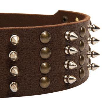 English Pointer Leather Collar with Rust-proof Fittings