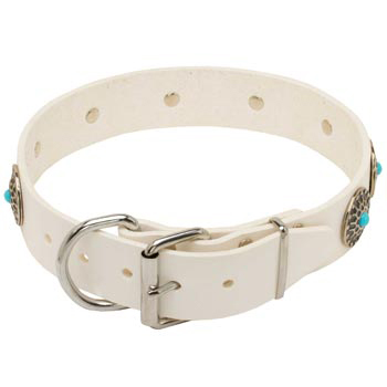 Leather   English Pointer Collar White Fancy for Dog Training, Walking