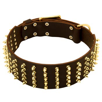 Fashionable Spiked Leather English Pointer Collar