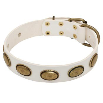 White Leather English Pointer Collar with Vintage Oval Plates