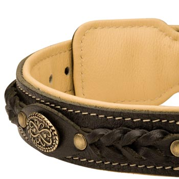 Leather Walking Fashion Collar for English Pointer