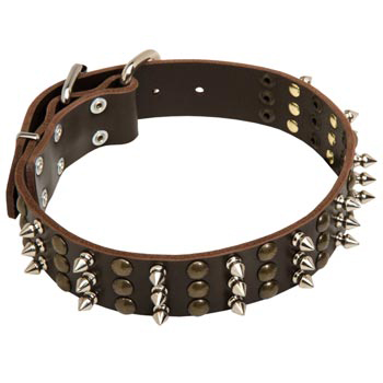 English Pointer Handmade Leather Collar 3  Studs and Spikes Rows