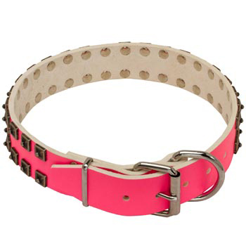English Pointer Pink Leather Collar for Walking She-Dogs