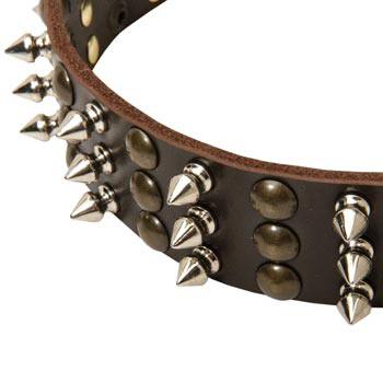 3 Rows of Spikes and Studs Decorative English Pointer  Leather Collar