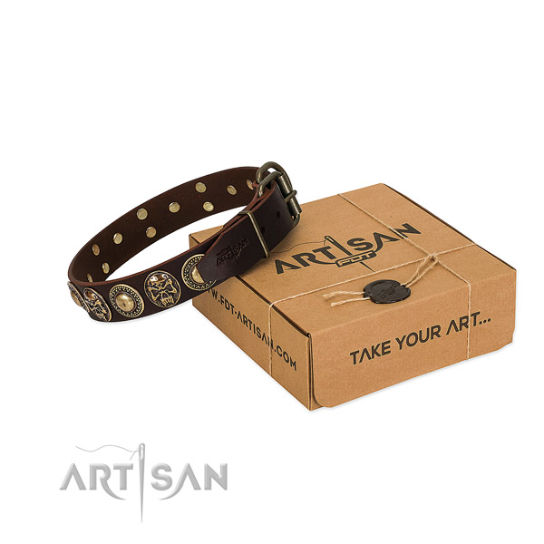 Rust resistant adornments on dog collar for stylish walking