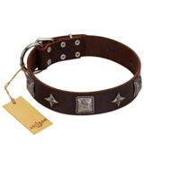 """Cold Star"" Designer FDT Artisan Brown Leather English Pointer Collar with Silver-Like Adornments"