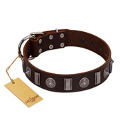 """Spiky Way"" FDT Artisan Brown Leather English Pointer Collar with Silver-Like Decorations"