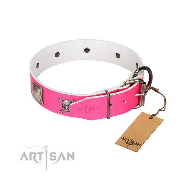 Stylish walking full grain leather dog collar with unique adornments