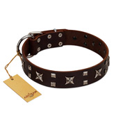 """Bigwig Woof"" FDT Artisan Brown Leather English Pointer Collar with Chrome Plated Stars and Square Studs"