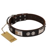 """Baller Status"" FDT Artisan Brown Leather English Pointer Collar Adorned with a Set of Chrome Plated Studs and Plates"