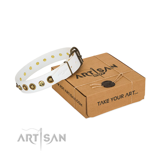 Full grain genuine leather collar with fashionable adornments for your four-legged friend