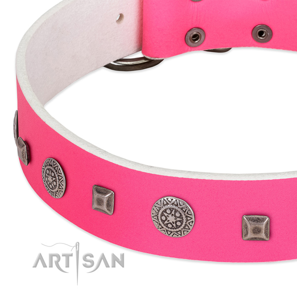 Flexible full grain leather dog collar with stylish embellishments