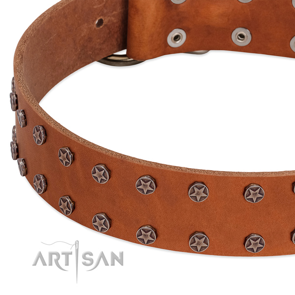 Stylish design leather dog collar for daily use