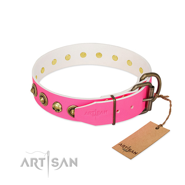 Full grain genuine leather collar with stylish design embellishments for your four-legged friend