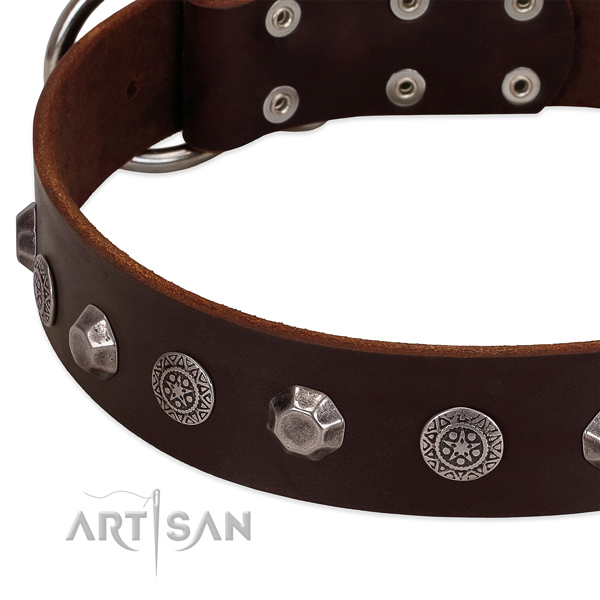 Exquisite leather collar for your pet stylish walks