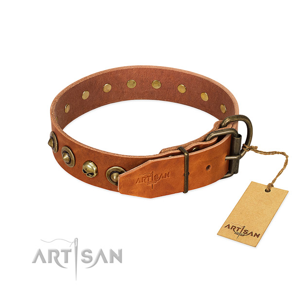 Natural leather collar with trendy embellishments for your pet