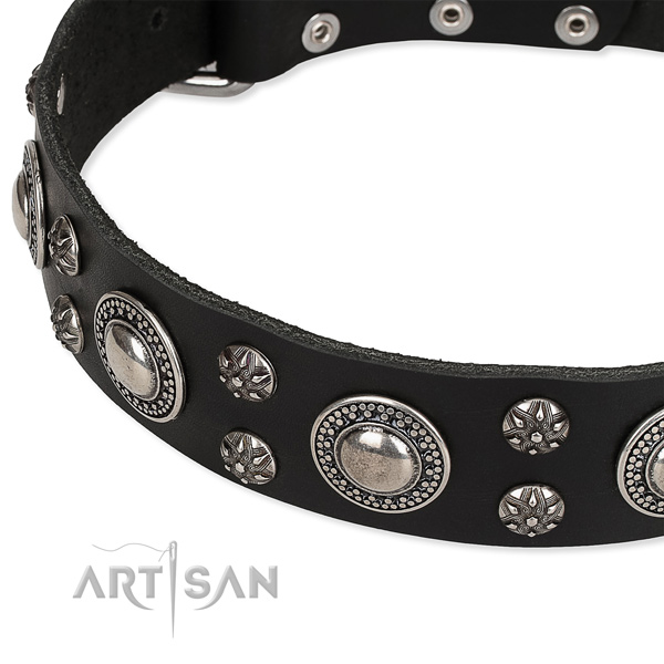 Comfy wearing embellished dog collar of finest quality genuine leather