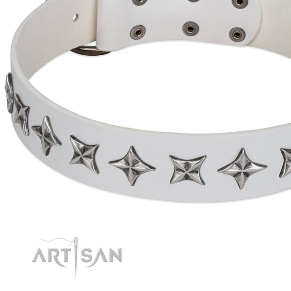 Everyday walking embellished dog collar of top notch genuine leather