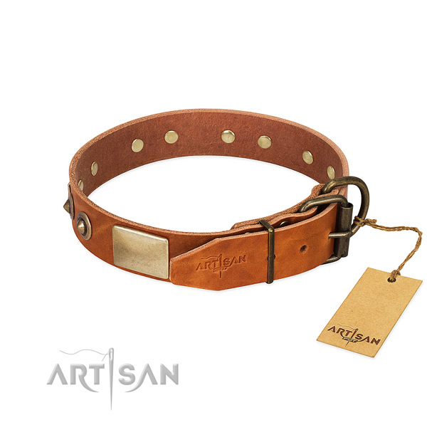 Strong embellishments on natural genuine leather dog collar for your dog