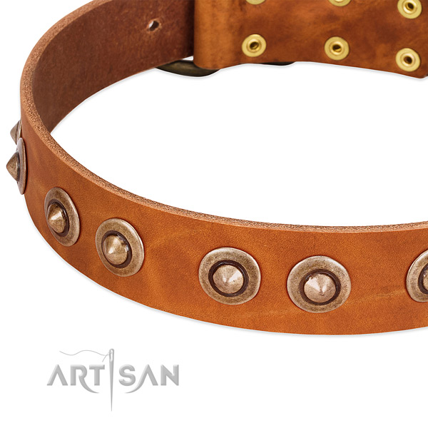 Rust-proof decorations on full grain leather dog collar for your four-legged friend