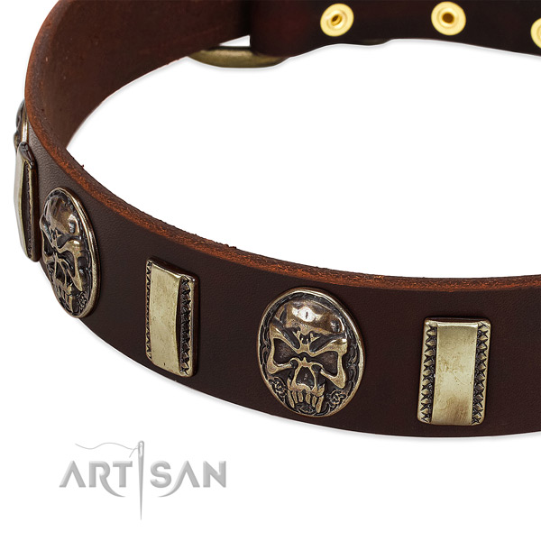 Rust resistant buckle on natural genuine leather dog collar for your pet