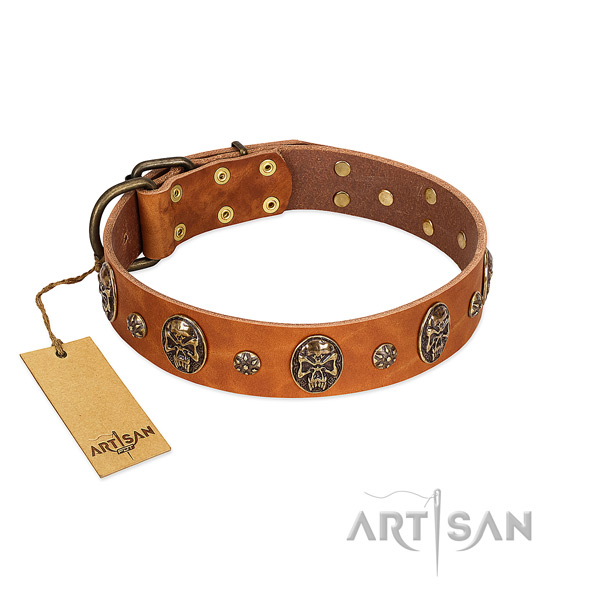 Adjustable leather collar for your pet