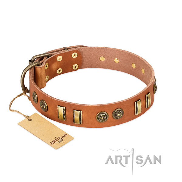 Rust resistant fittings on leather dog collar for your canine