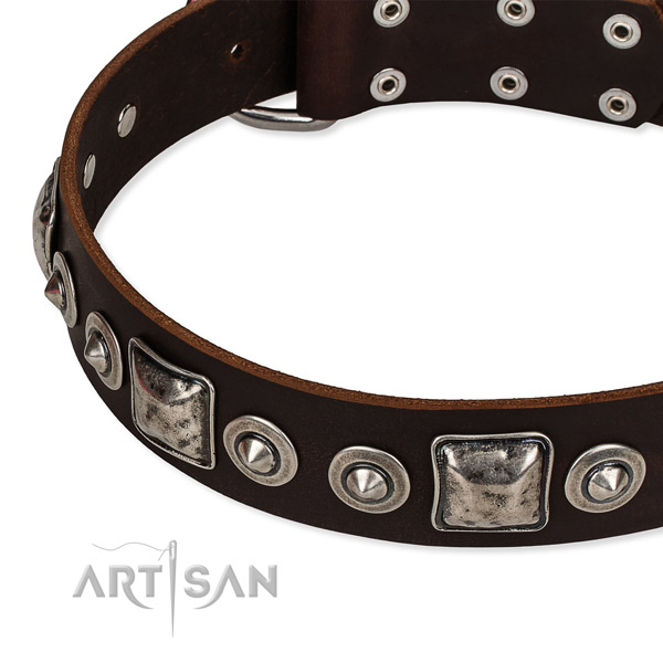Full grain natural leather dog collar made of soft to touch material with decorations