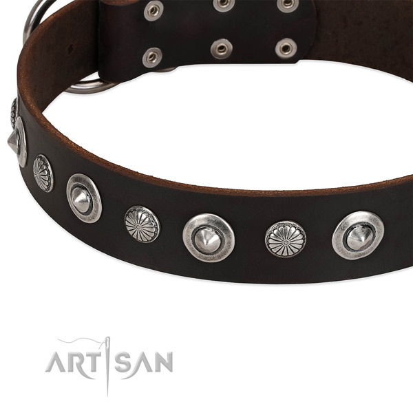 Stylish adorned dog collar of best quality natural leather
