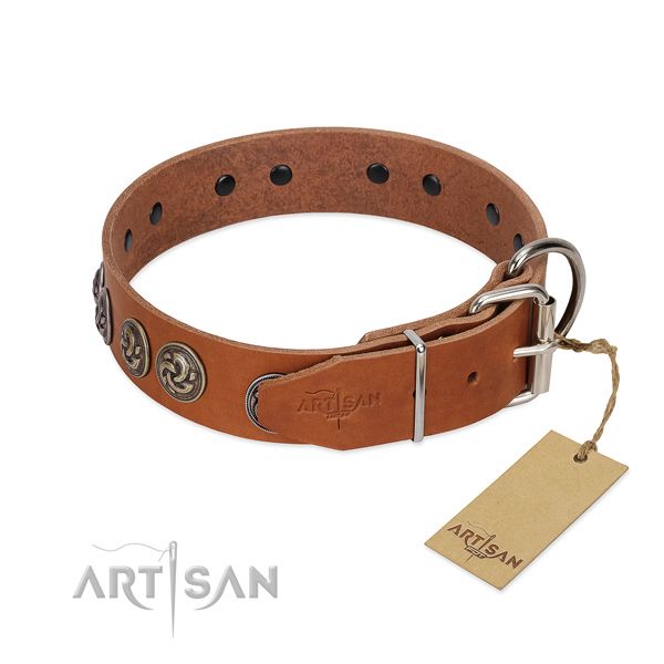 Corrosion proof D-ring on studded full grain genuine leather dog collar
