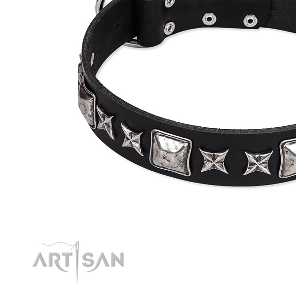 Fancy walking studded dog collar of high quality full grain natural leather