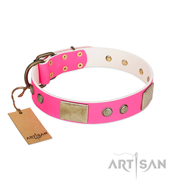 Easy adjustable leather dog collar for daily walking your pet