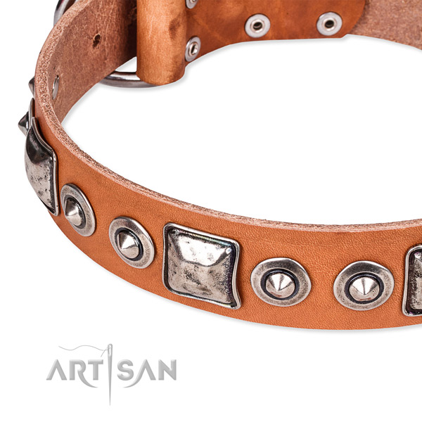 Strong full grain genuine leather dog collar handmade for your impressive canine